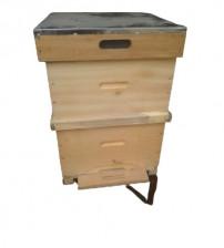 Polen Tuzaklı Arı Kovanı