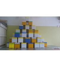 Ana Arı Çiftleştirme Kutusu